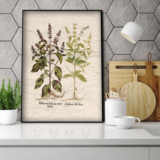 plakaty z ziołami do kuchni