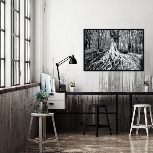 plakat czarno-biały korzenie