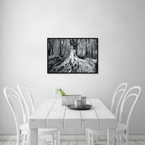 czarno-biały plakat z drzewami