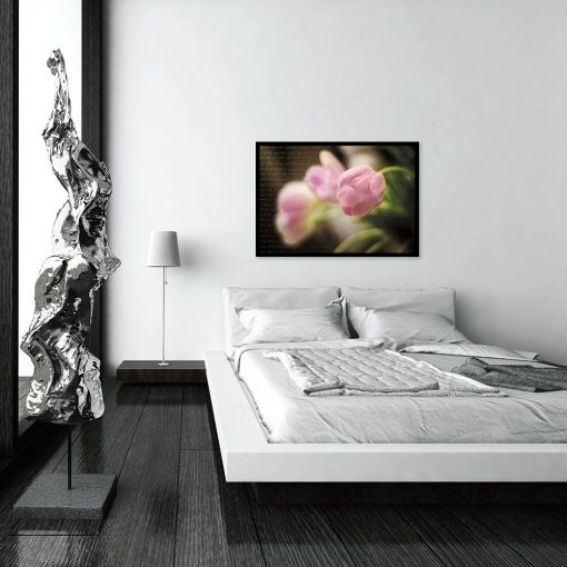 plakat różowy tulipan