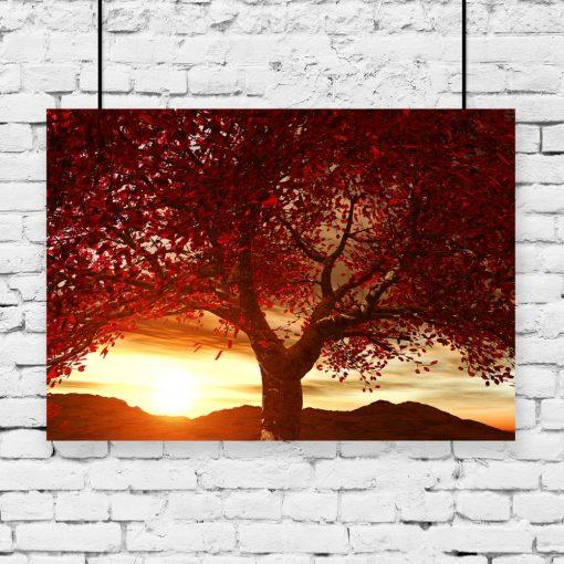 plakat z motywem zachodu słońca i drzewa