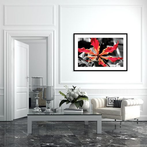 plakat kwiat różowy