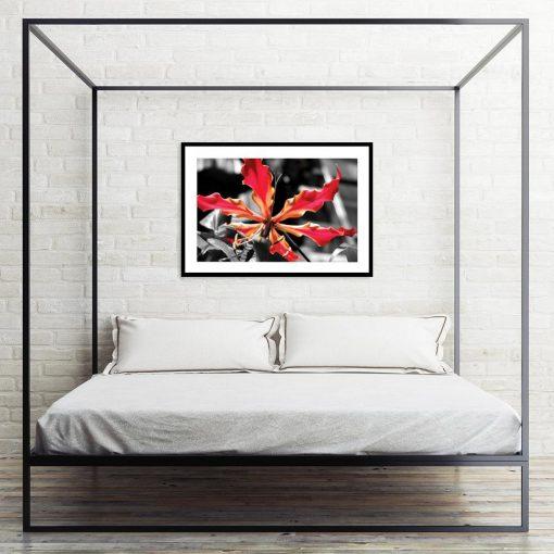 czarno-biały plakat z kwiatem