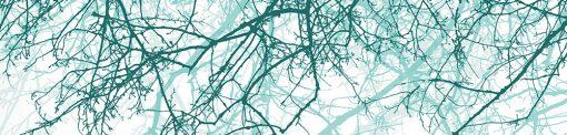 fototapeta z gałęziami drzew