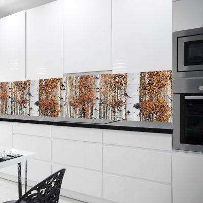 fototapeta z brzozami do kuchni