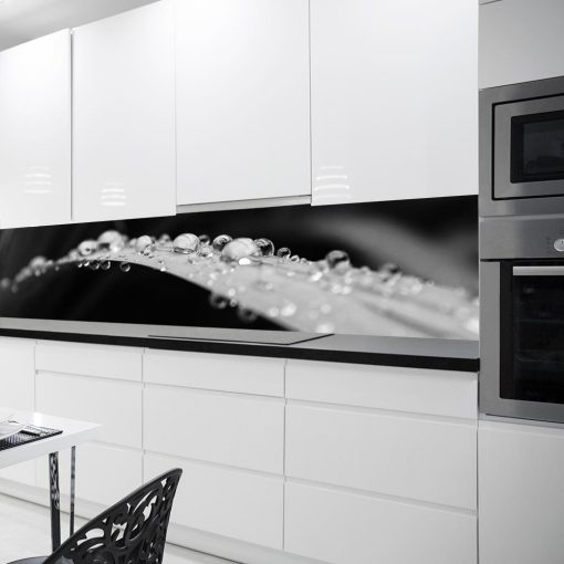 fototapeta z liściem w rosie do kuchni