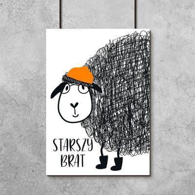plakat z owieczką w czapce