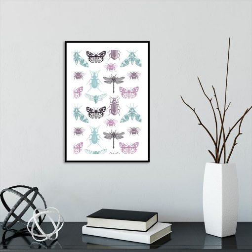 plakat insekty
