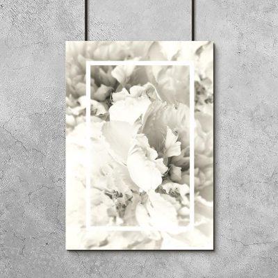 plakat z motywem białych kwiatów