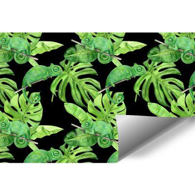 fototapeta z tropikalnymi roślinami