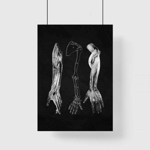 Plakat - Przedramię