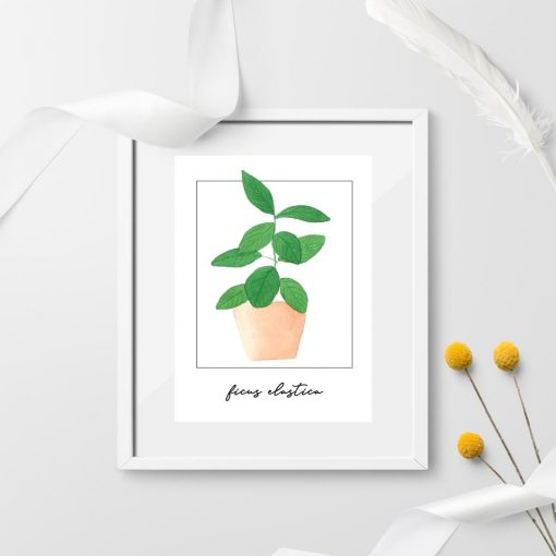 Plakat z figowcem do biura