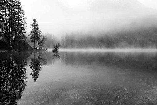 Fototapeta - Mgła nad jeziorem