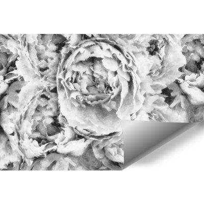 Szara fototapeta z kwiatami do sypialni