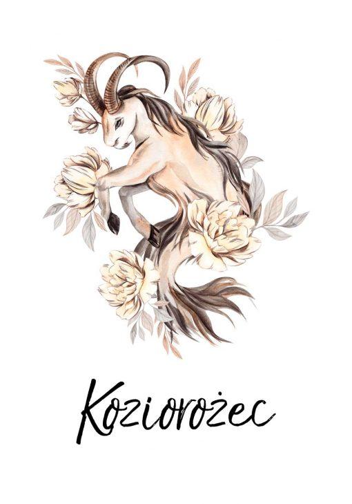 Plakat - Koziorożec