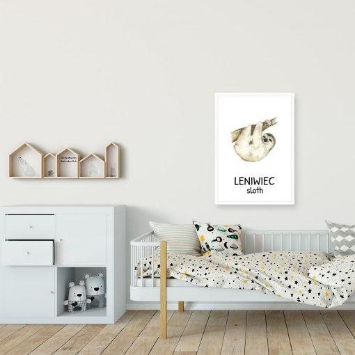 plakat z angielskim leniwcem dla dziewczynki