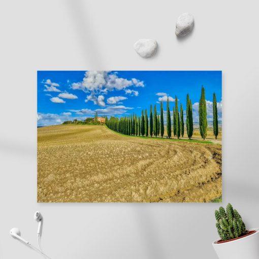 Obraz aleja cyprysów w Poggio Covili