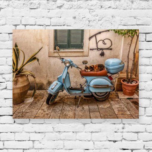 Obraz z kotkiem na skuterze - Korfu do salonu