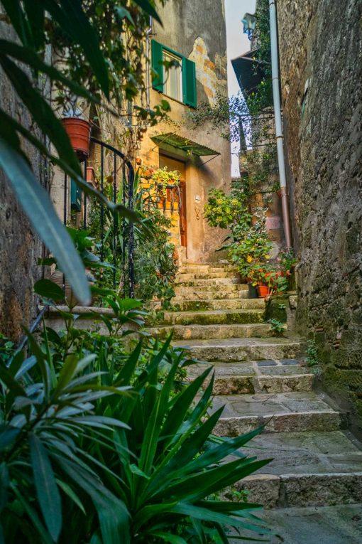Obraz kamienne schody i kwiaty