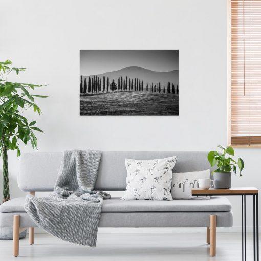 Czarno-biały obraz z topolami do dekoracji nowoczesnej sypialni