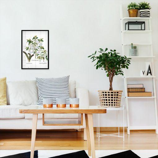 Plakat z białymi kwiatami na deskach do salonu