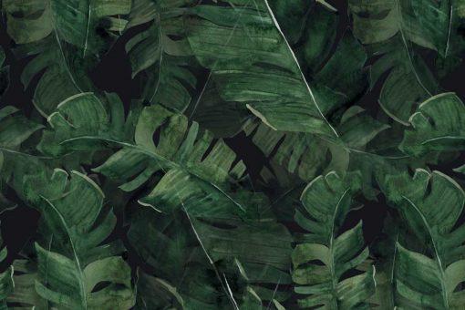 Fototapeta zielone egzotyczne liście