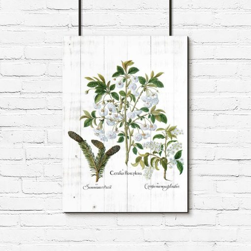 Plakat z białymi kwiatami na deskach do przedpokoju