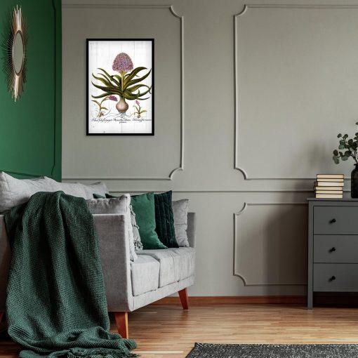 Botaniczny plakat z hiacyntem do sypialni