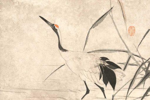 Tapeta z żurawiem w sepii