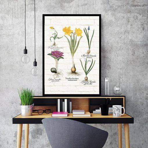 Botaniczny plakat z niebieskim szafirkiem do biura