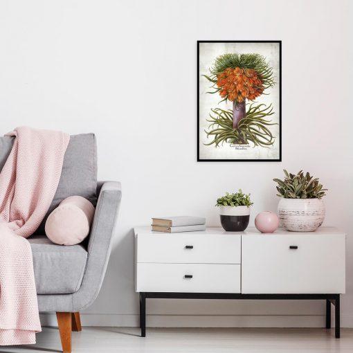 Kwiat cesarskiej korony - Plakat do kuchni