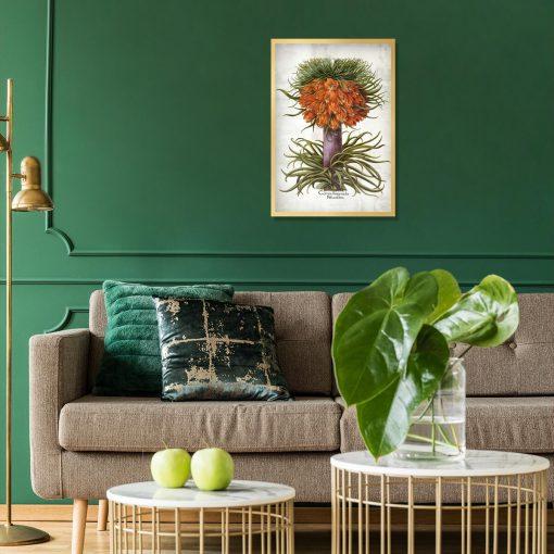 Kwiat cesarskiej korony - Plakat do salonu
