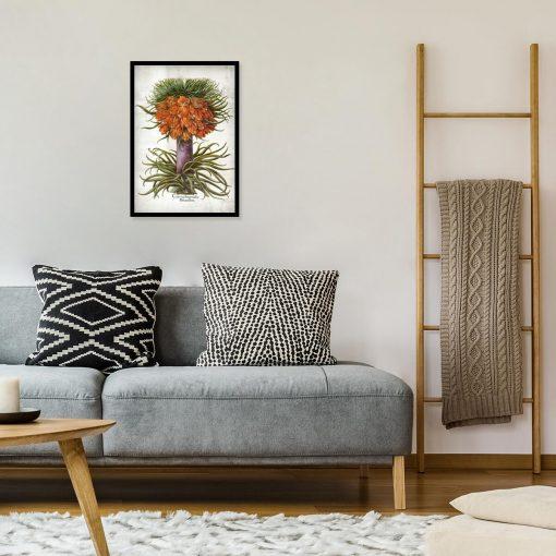 Kwiat cesarskiej korony - Plakat do sypialni