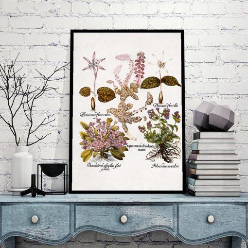 Plakat botaniczny z kwiatami ogrodowymi do gabinetu