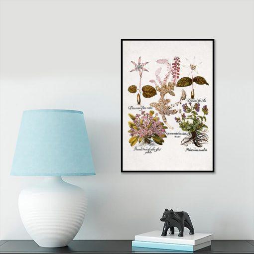 Plakat botaniczny z kwiatami ogrodowymi na przedpokój
