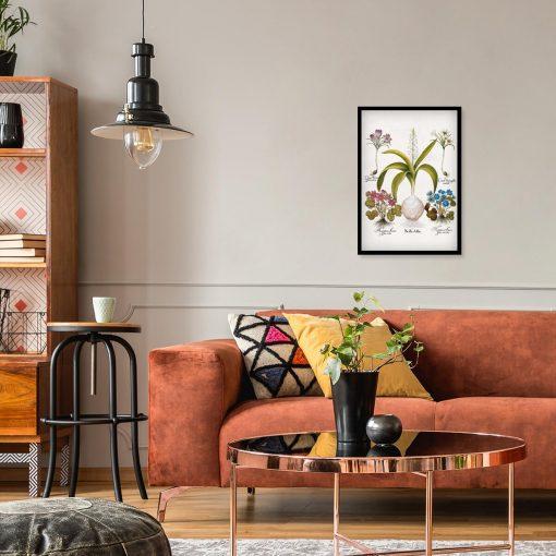 Plakat dla florysty - Cebulica biała do salonu
