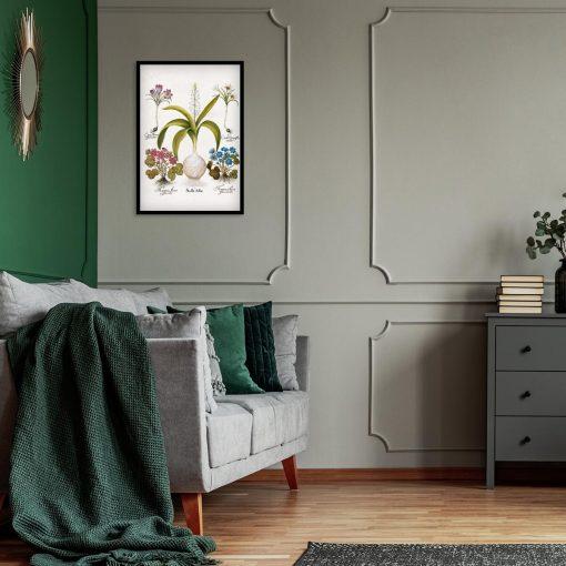 Plakat dla florysty - Cebulica biała do sypialni