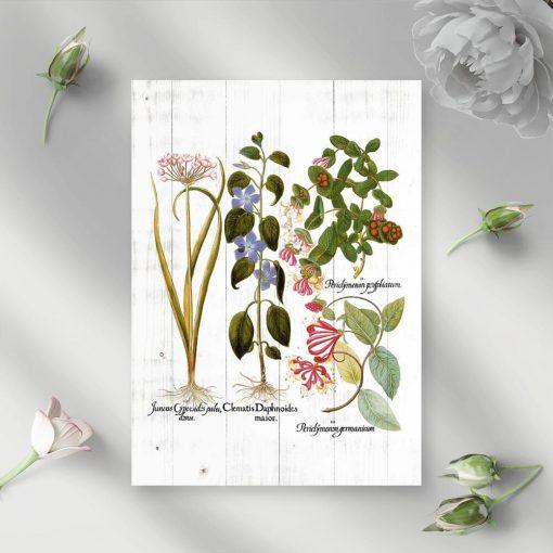 Plakat rustykalny z roślinami