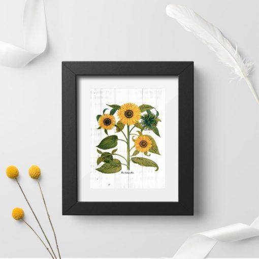 Plakat w stylu rustykalnym ze słonecznikami