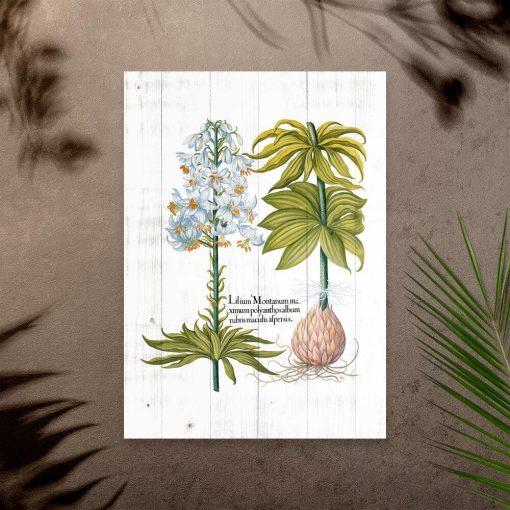 Plakat z białym kwiatem na tle desek