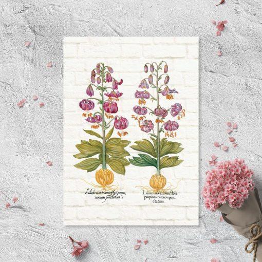 Plakat z fioletowymi liliami