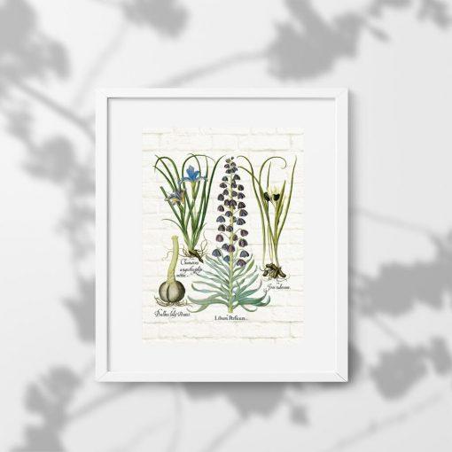Plakat z irysami i liliami