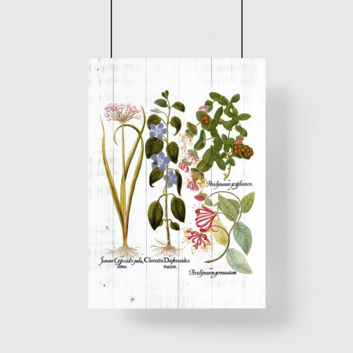 Plakat z kwiatami na tle desek