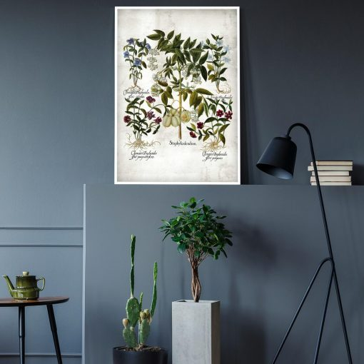 Plakat z kwiatkami dla florysty do gabinetu