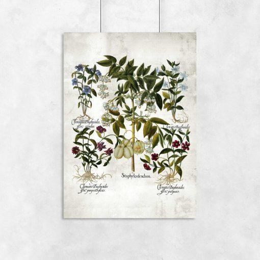 Plakat z kwiatkami dla florysty do przedpokoju