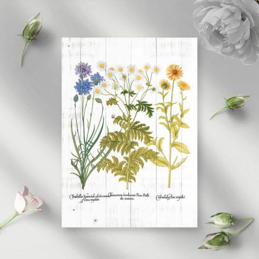 Plakat z kwitnącymi roślinami