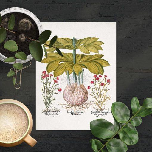 Plakat z lilią i czerwonymi kwiatuszkami