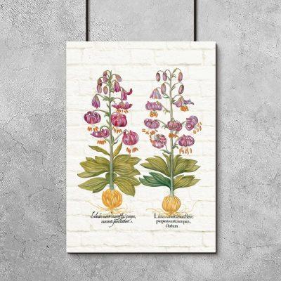 Plakat z liliami