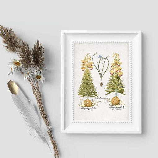 Plakat z liliami i irysami
