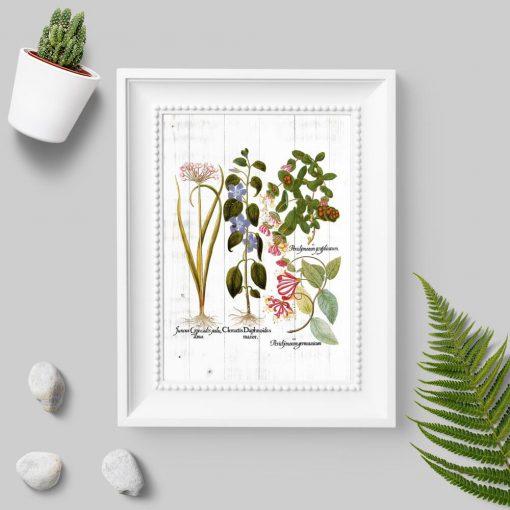 Plakat z motywem roślinnym na tle desek w pastelowych kolorach